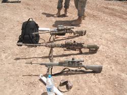 Tigers_in_Iraq 064