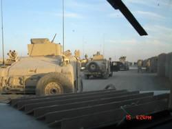 Tigers_in_Iraq 032