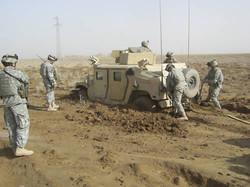 Tigers_in_Iraq 068