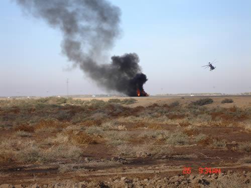 Tigers_in_Iraq 065