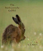 The Backwoods Rabbit book cover