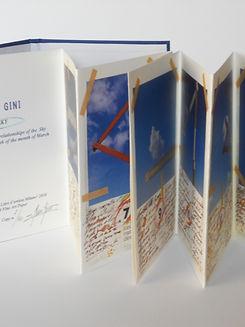 Gino Gini 2010.JPG