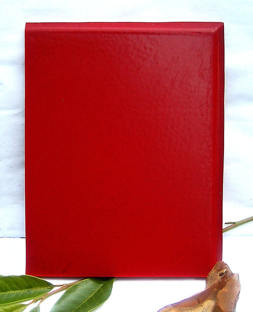 EXCEPTIONAL PLATE RED Wide Thickness