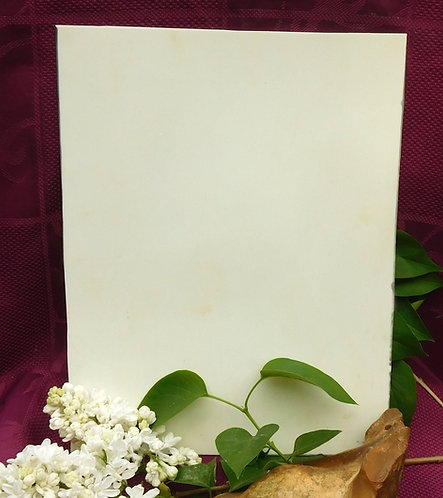 Plate of GALALITH White-off / Ivory Thick 1,5mm