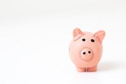 SIMPLE IRS Piggy Bank