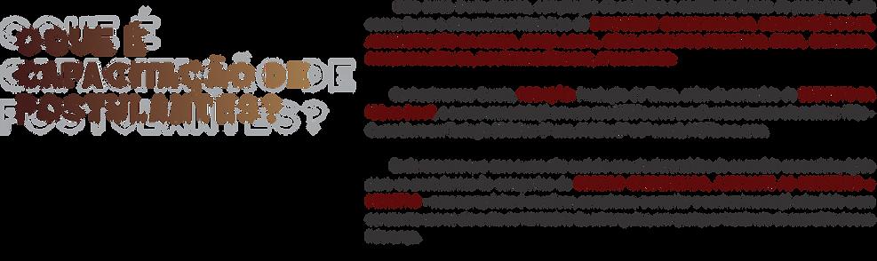 CAPACITAÇÃO TEXTO.png