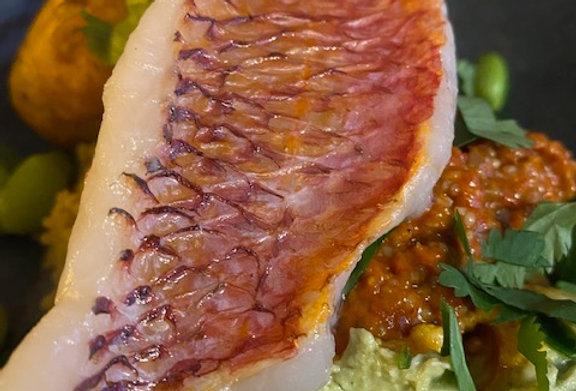 Maaltijd salade van cous cous met rode mul