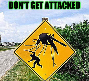 Mosquito Control in The Colony Texas, 75056