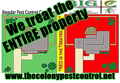 Affordable Pest Control.jpg