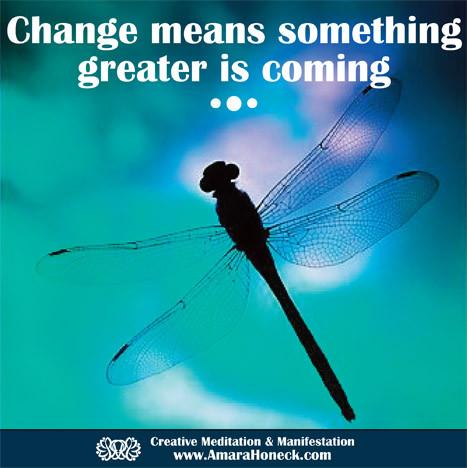 Dragonfly Silhouette | Spiritual Growth Article | Amara Honeck | Tennessee Shaman Consciousness Exploration Teacher