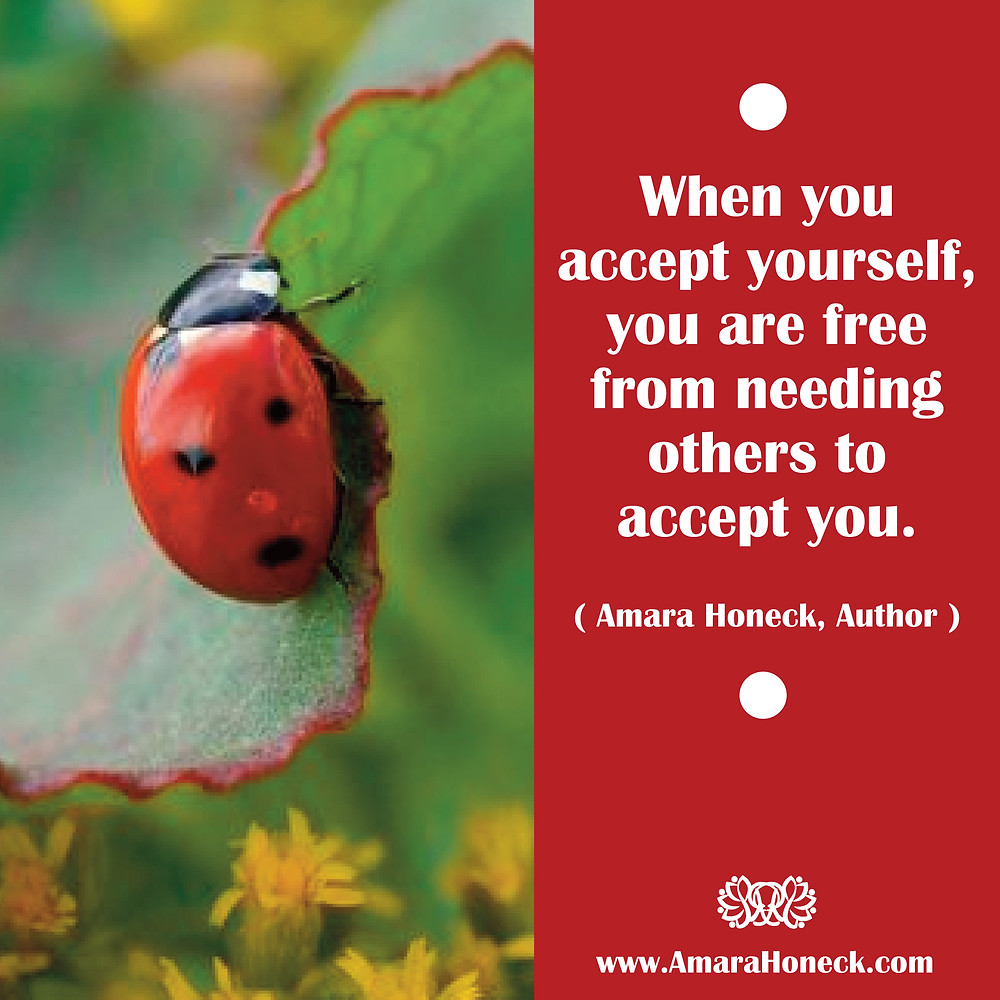 Ladybug Climbing Leaf | Spiritual Growth Article | Amara Honeck | Tennessee Shaman Consciousness Exploration Teacher