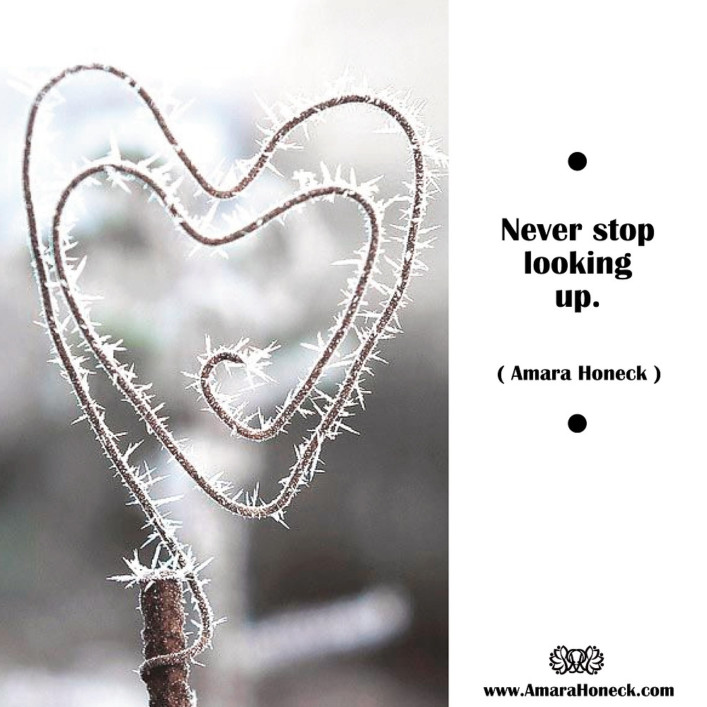 Frosty Wire Heart | Spiritual Growth Article | Amara Honeck | Tennessee Shaman Consciousness Exploration Teacher