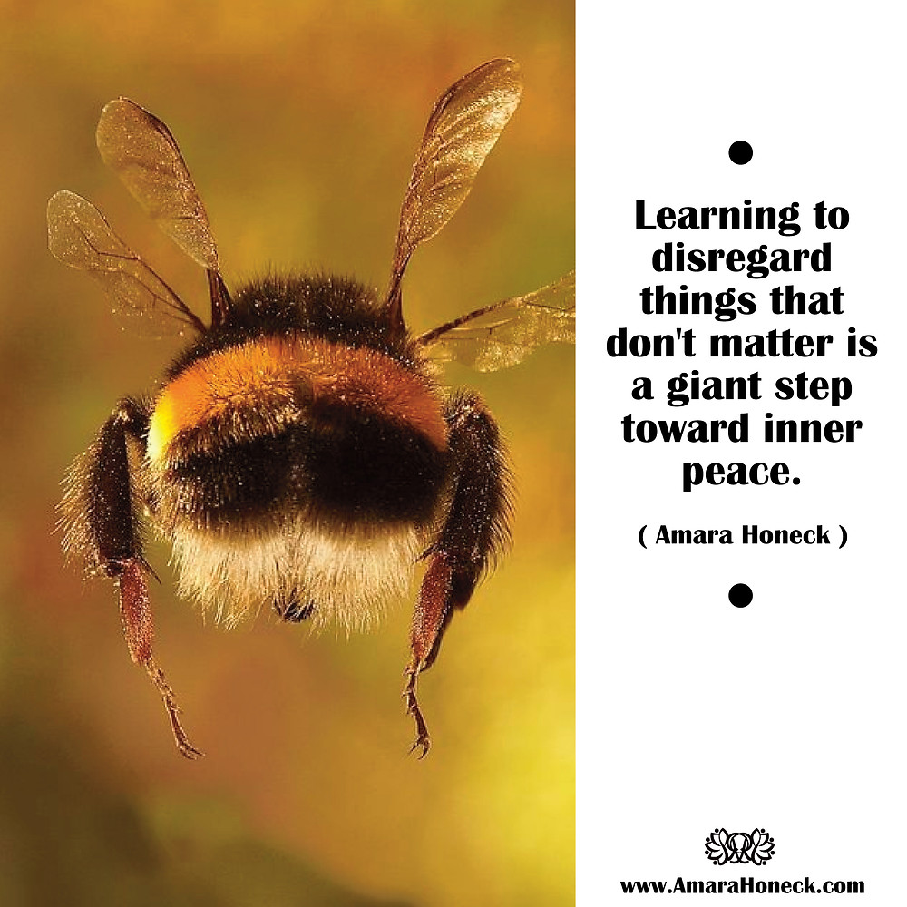 Bumble Bee Flying Away | Spirituality Consciousness Article | Amara Honeck | Tennessee Shaman Consciousness Exploration Teacher | Gatlinburg, Tennessee