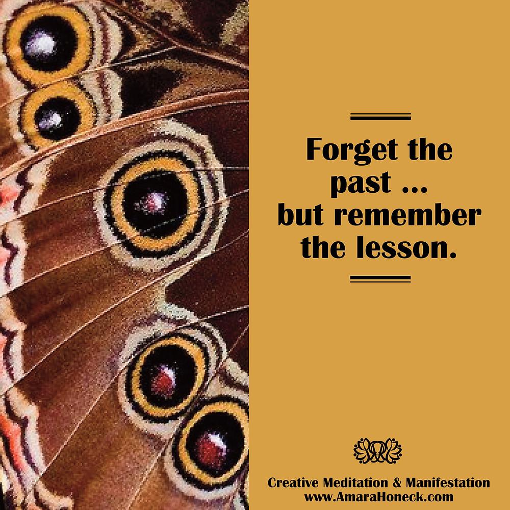 Closeup Butterfly Wing | Spiritual Growth Article | Amara Honeck | Tennessee Shaman Consciousness Exploration Teacher