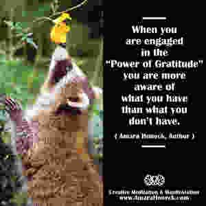 Raccoon Smelling Flower | Spiritual Growth Article | Amara Honeck | Tennessee Shaman Consciousness Exploration Teacher