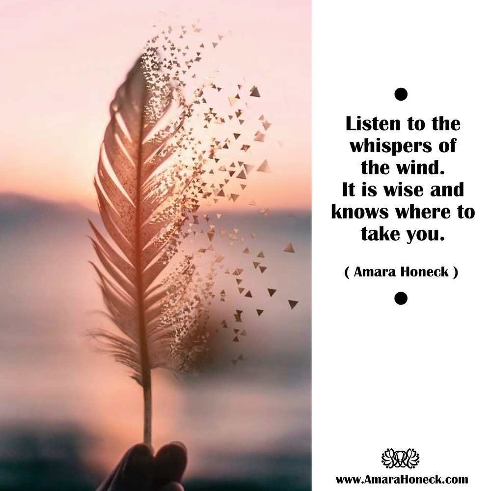 Feather Blowing in Wind   Spiritual Growth Article   Amara Honeck   Tennessee Shaman Consciousness Exploration Teacher