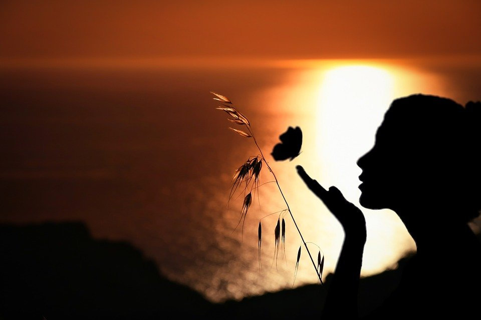 femme papillon.jpg