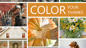 Color your Thanksgiving