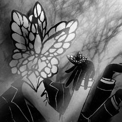 Funeral of the Dead Butterflies