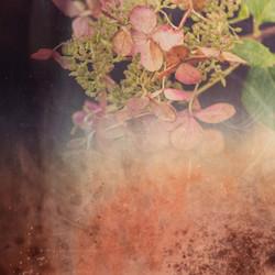 flowercollage_2