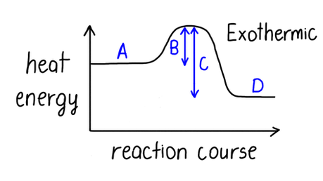Which letter on this graph indicates the activation energy of this reaction?