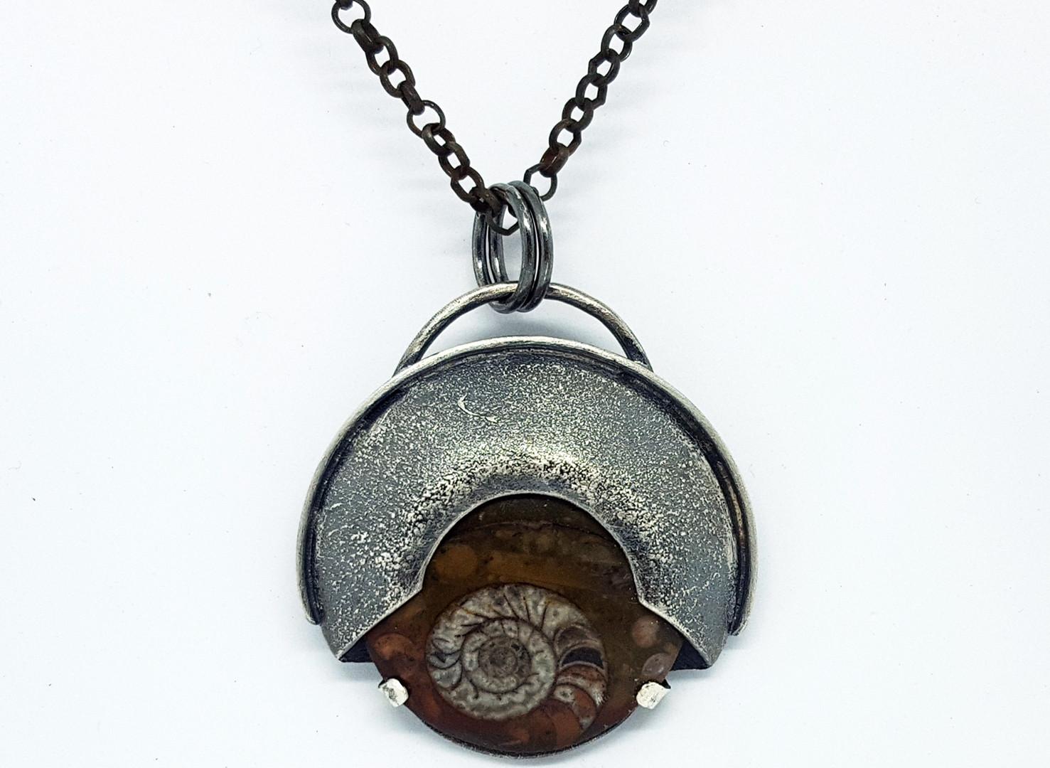 Ammonite 2.jpg