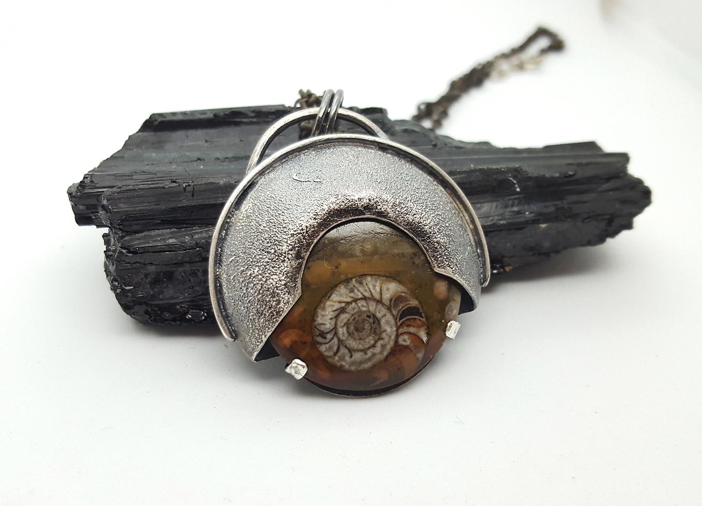 Ammonite 1.jpg