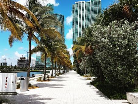 5 motivos para alugar um carro em Miami