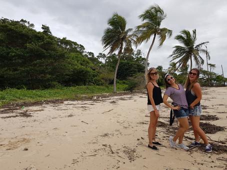 Ilha do Marajó: um pedaço do norte do Brasil