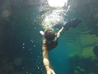 Galápagos e a Isla Santa Cruz