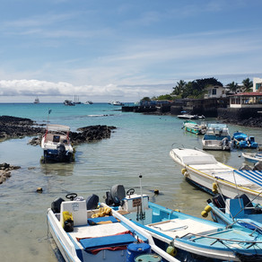 Um pulo em Galápagos