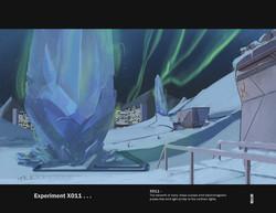 Experiment X011