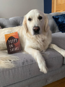 Here's Poppy's furriend, Poppy with her very own copy