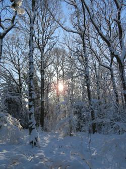 Let it snow, let it snow, let it snow...