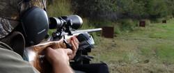 best colorado elk hunts