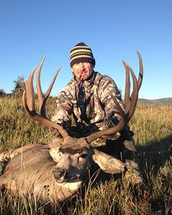 Mule Deer  //  Motherwell Ranch