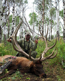 """Trophy Bull  //  Over 400"""" package"""