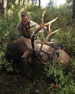 Free Range Elk Hunt