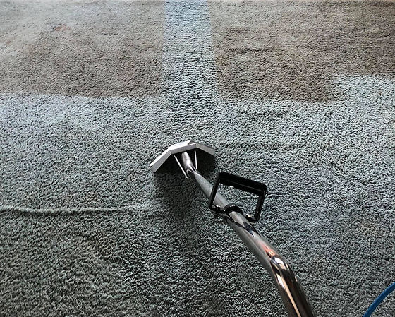 Steam carpet cleaning companies
