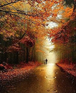Autumn in Czechia