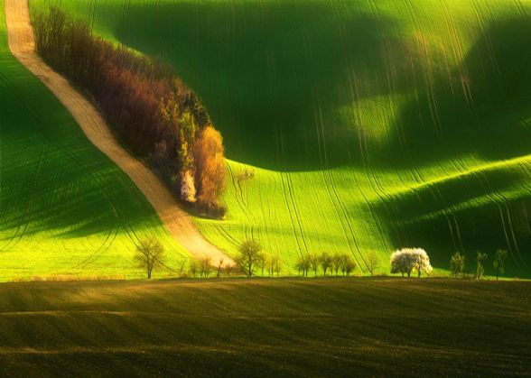 South Moravian fields, Czechia
