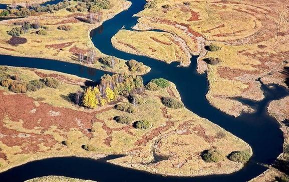 Šumava, Vltava river meanders - Czechia