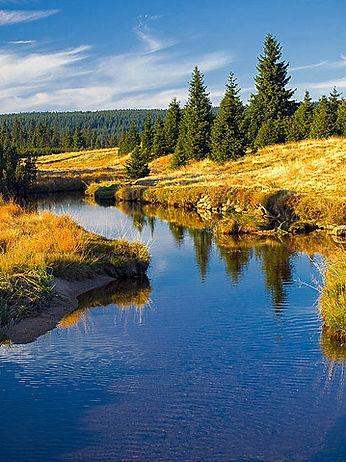 """Saphir"" creek in Jizera mountains (North Bohemia), Czechia"