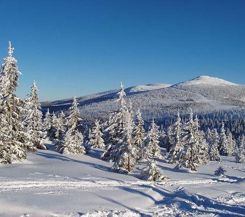 Krkonoše mountains (East Bohemia), Czechia