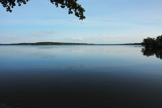 Rožmberk pond (South Bohemia), Czechia