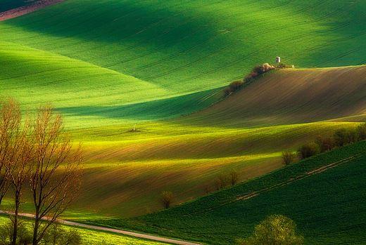South Moravian fields in the spring, Czechia