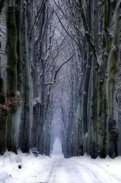 Winter alley in Czechia