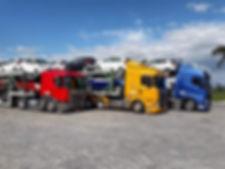 Frota de Caminhão Cegonha.jpg
