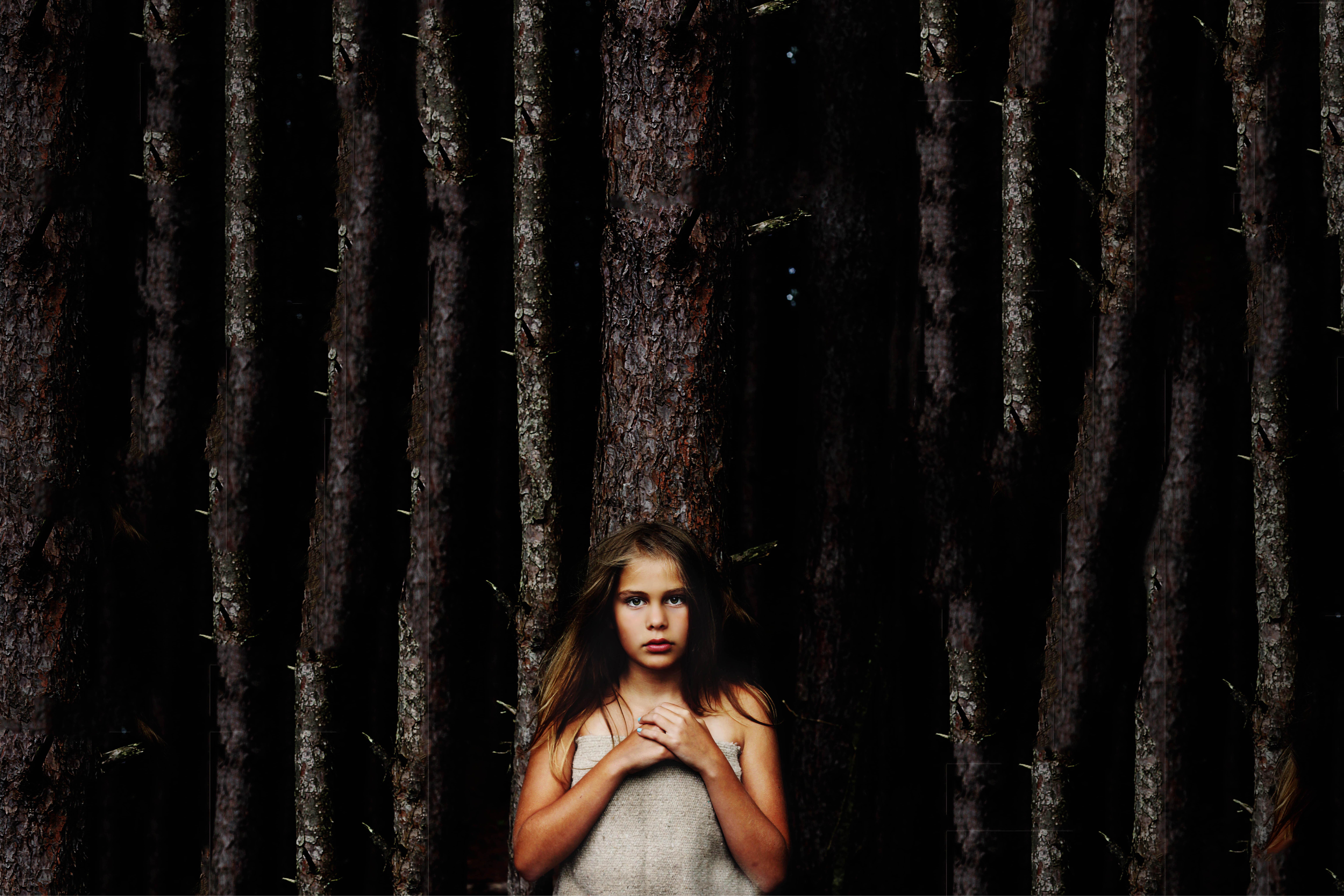 treecontest