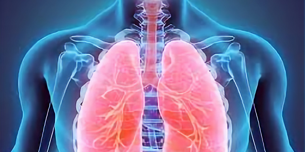 Respiratory System - Online Course